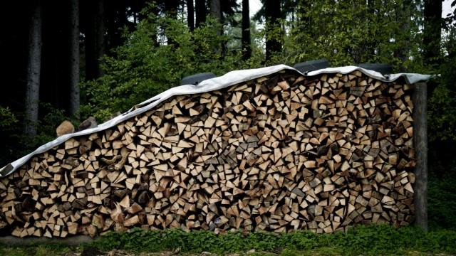 Wenigmuenchen: Holzstapel / Brennholz vor Waldrand