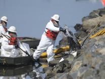 Kalifornien: Ölpest bedroht zahlreiche Tierarten