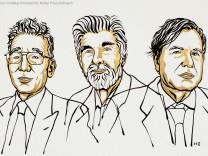 Nobelpreis 2021 - Syukuro Manabe, Klaus Hasselmann and Giorgio Parisi