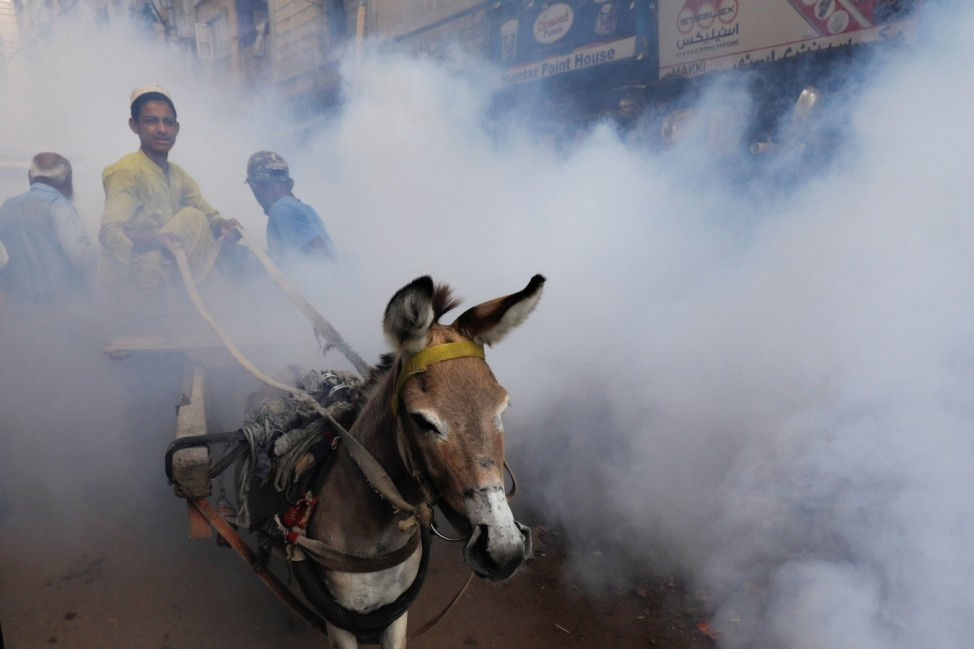 Fumigation drive to stem the spread of Dengue virus in Karachi