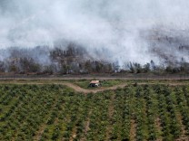 A wooden house is pictured at a palm oil plantation as smoke covers trees due to the forest fires near Banjarmasin