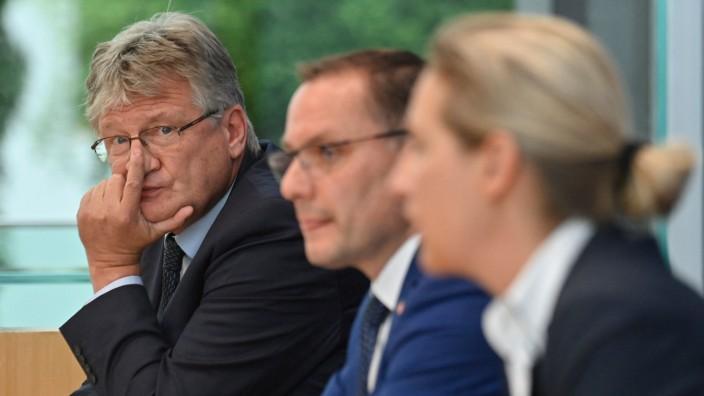Alternative für Deutschland: AfD-Co-Chef Jörg Meuthen neben Tino Chrupalla und Alice Weidel (von links nach rechts).