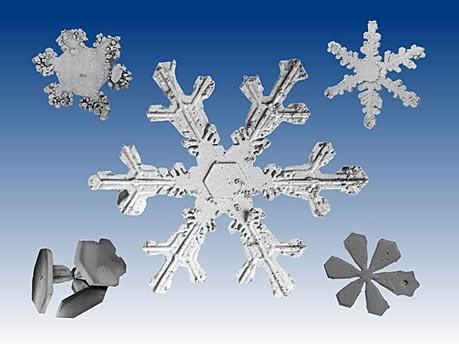 Schneeflocken unter dem Mikroskop; Nasa