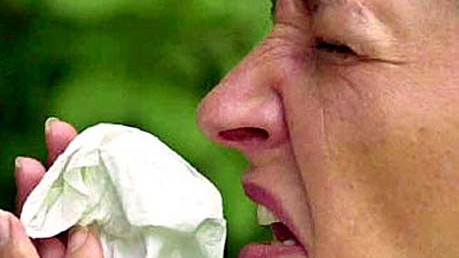 Reise-Knigge für Japan: Niesen? Nur auf der Toilette!