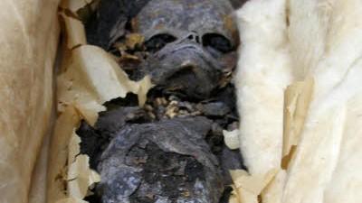 Grab des Tutanchamun: Noch ist die Identität des mumifizierten Fötus ungeklärt - doch ein DNS-Test soll Abhilfe schaffen.