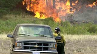 Feuerökologie: Ein Feuerwehrmann beobachtet am 17. Juni 2002 die Flammen des Hayman-Feuers im Pike National Forest nahe Deckers, Colorado
