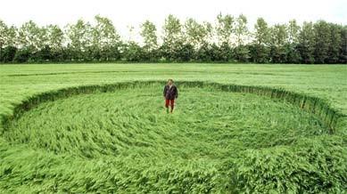 """Mythos: Der Bauer ist sauer. In seinem Feld bei Schmedshagen in Nordvorpommern entdeckte er am 7.6.2002 diesen """"Ufo-Kreis"""". Bisher weiß niemand, ob das Getreide dort jemand kunstgerecht niedergetrampelt hat - oder ob es sich doch um ein Werk von Regen und Wind handelt."""