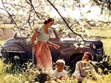 Opel Olympia Limousine, 1951