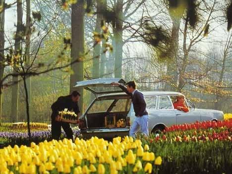 Opel Rekord C Caravan, 1968