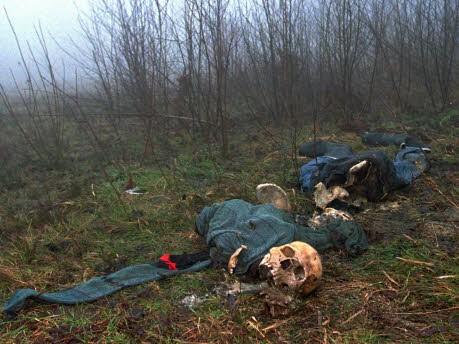 Srebrenica; AP