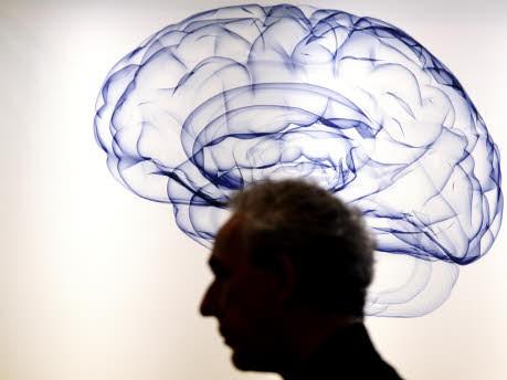 Gehirn, dpa
