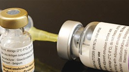Schweinegrippe, Impfung, dpa