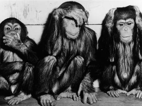 Die drei Affen, Getty