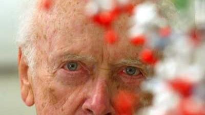Nach rassistischer Äußerung: James D. Watson hinter einem Modell der Doppelhelix der DNA. Watson ist von seinem Amt zurückgetreten.