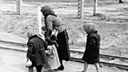 Auschwitz,AP