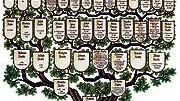 Trend zum Familienstammbaum: Das Ziel aller Ahnenforscher - ein weit verzweigter, doch übersichtlicher Stammbaum.