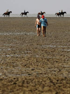 Wattenmeer Unesco Weltnaturerbe, ddp