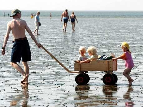 Das Wattenmeer soll UNESCO-Welterbe werden, dpa