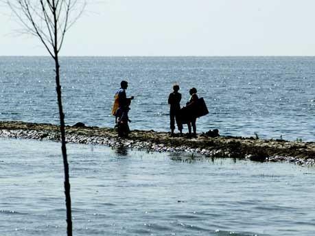 Das Wattenmeer soll UNESCO-Welterbe werden, AP