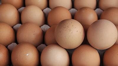 Eier, ddp