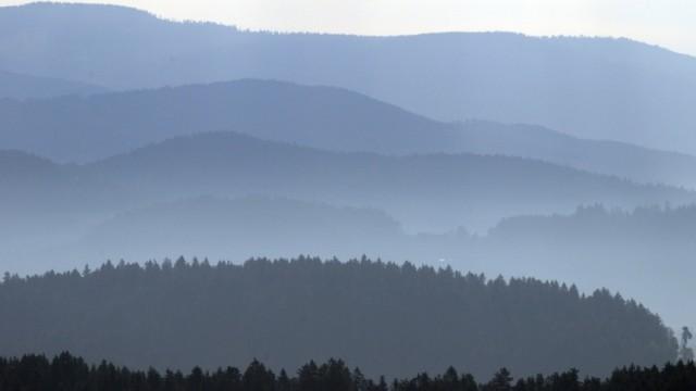 Morgendunst im Bayerischen Wald