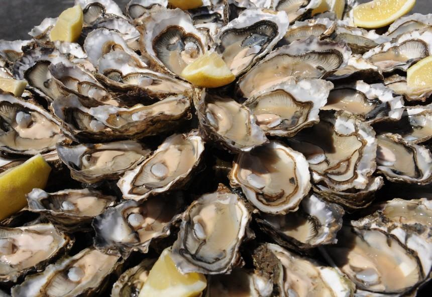 Austernsterben in Frankreich weitet sich aus