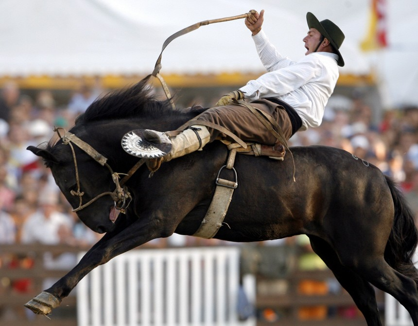 A Uruguayan gaucho rides a wild horse during the celebration of the Creole Week in Montevideo