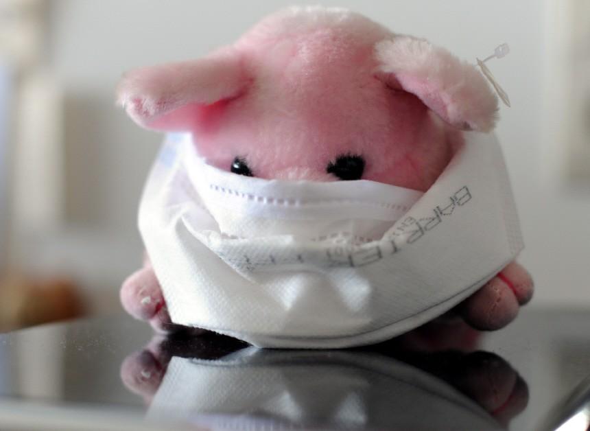 1000 Niedersachsen an Schweinegrippe erkrankt