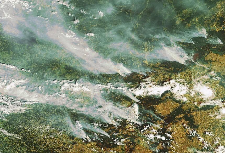 Waldbrände in Russland, dpa