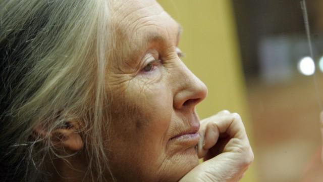 """Jane Goodall: Die Schimpansenforscherin und Naturschützerin Jane Goodall ist inzwischen 76 Jahre alt - aber zum Zurücklehnen findet sie es noch immer zu früh. """"Es gibt noch so viel zu tun."""""""