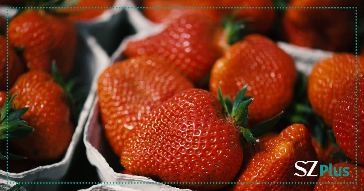 Erdbeeren Baumann